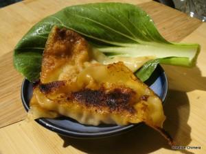 Homemade Beef Potstickers Recipe | DakotaMidnyght.com