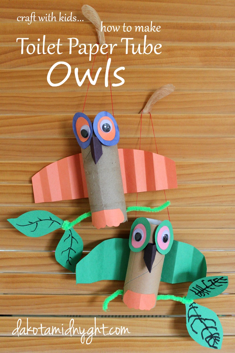 Toilet Paper Tube Owls Tutorial | dakotamidnyght.com