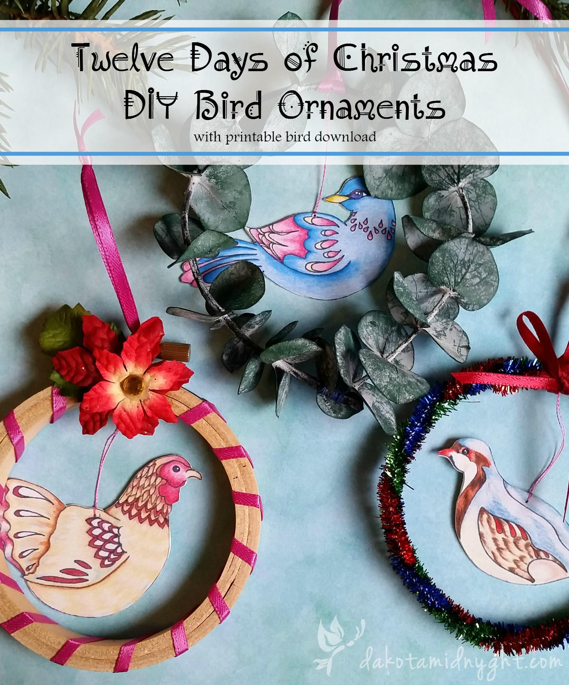 Free printable download for Twelve Days of Christmas DIY Bird Ornaments   dakotamidnyght.com